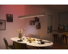 Philips Hue Ensis Pendel 2x39W 24V