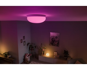 Philips Hue Flourish Taklampa 32W 230W