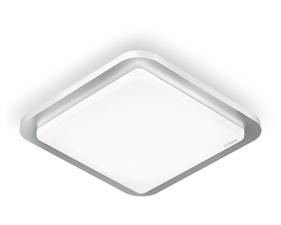 FYND STEINEL RS LED D2 (Indoor LED Light)